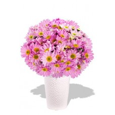 Chrysanthemum Bouquet